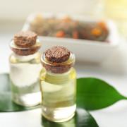 Tea-tree-oil-toxic-head-lice-remedies