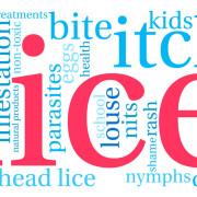 Head Lice Worries