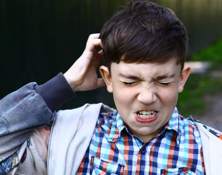 Head Lice, The Itchy Truth