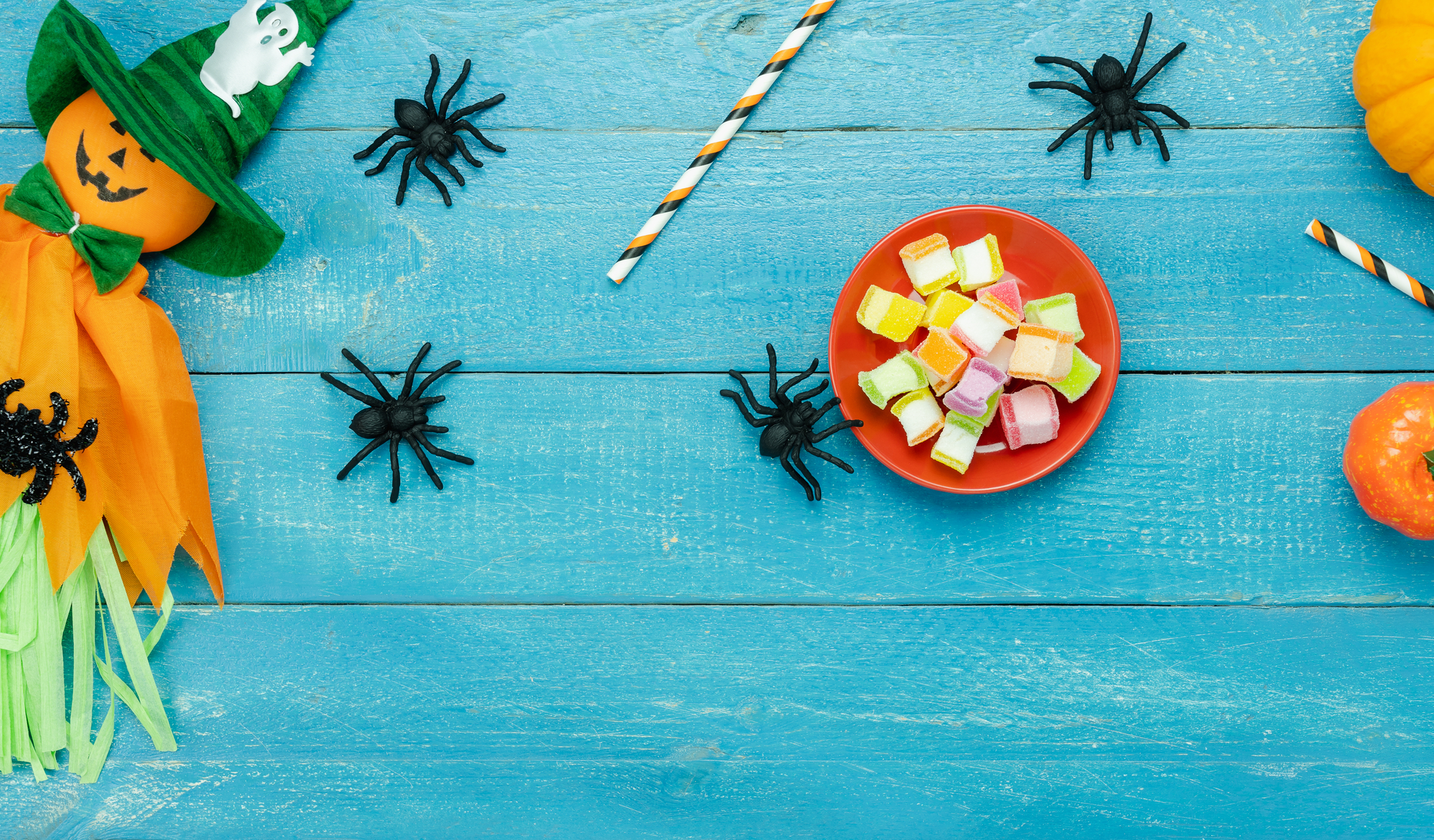 10 SPOOKY Things About Head Lice to Scare you This Halloween!